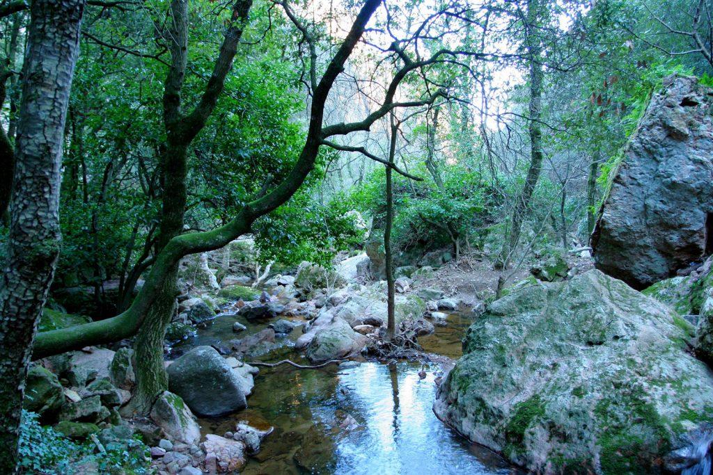 Source du Blavet à Bagnols-en-Forêt