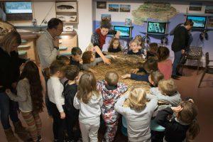 Visites pédagogiques à la Maison du Lac de Saint-Cassien