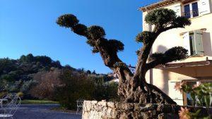 L'Escale Provençale
