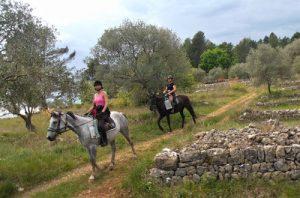 Balade détente à cheval/poney